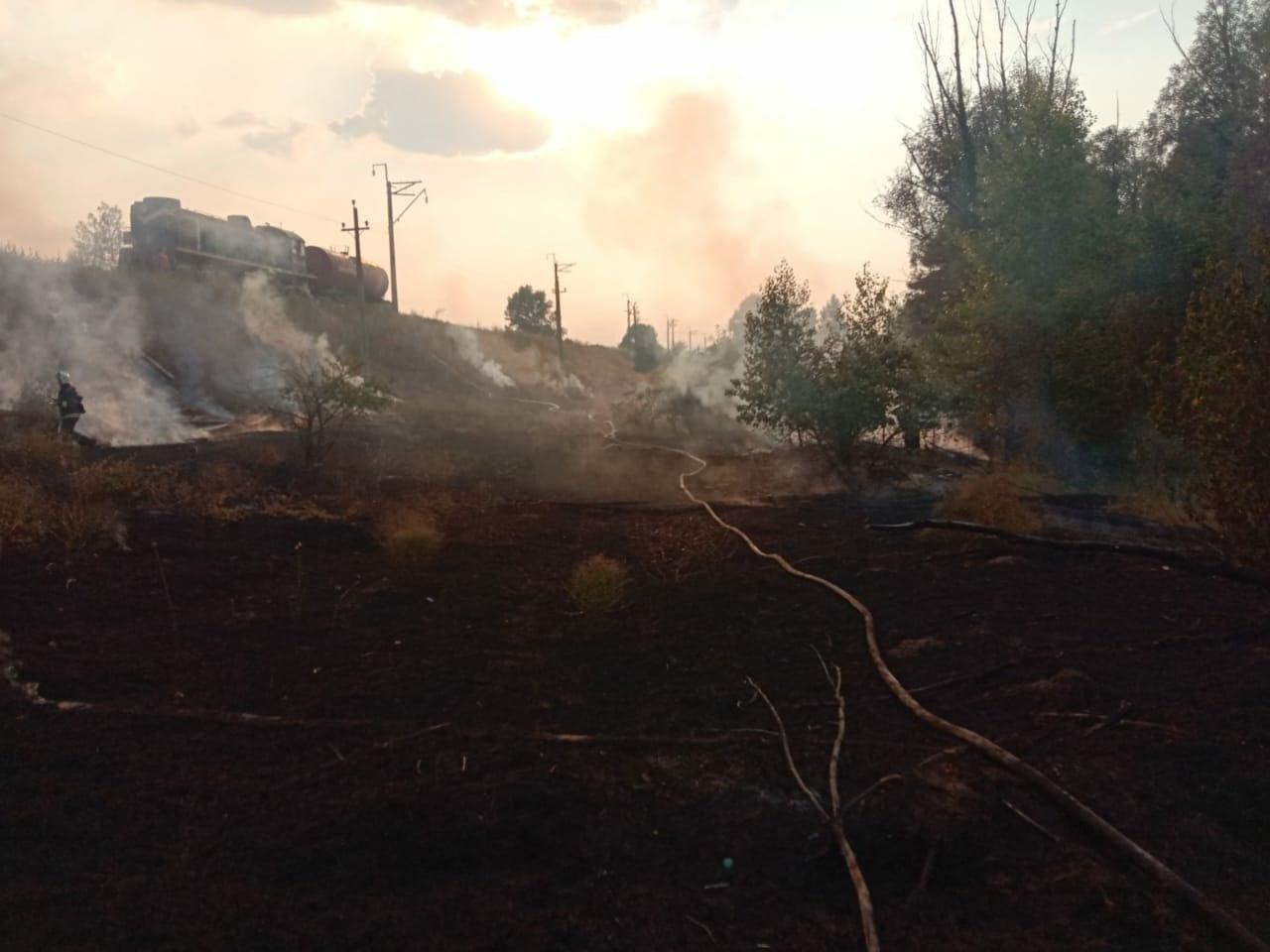 Пожарные тушили горящий лес вблизи Тольятти