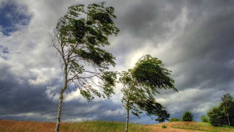 В Самарской области объявлен желтый уровень опасности из-за погоды