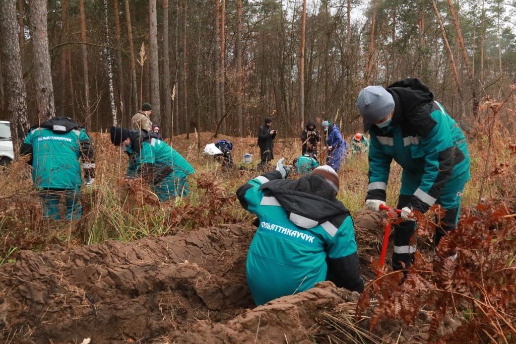«Тольяттикаучук» продолжил высадку леса