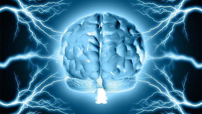 В 35 лет мозг человека достигает пика своих возможностей