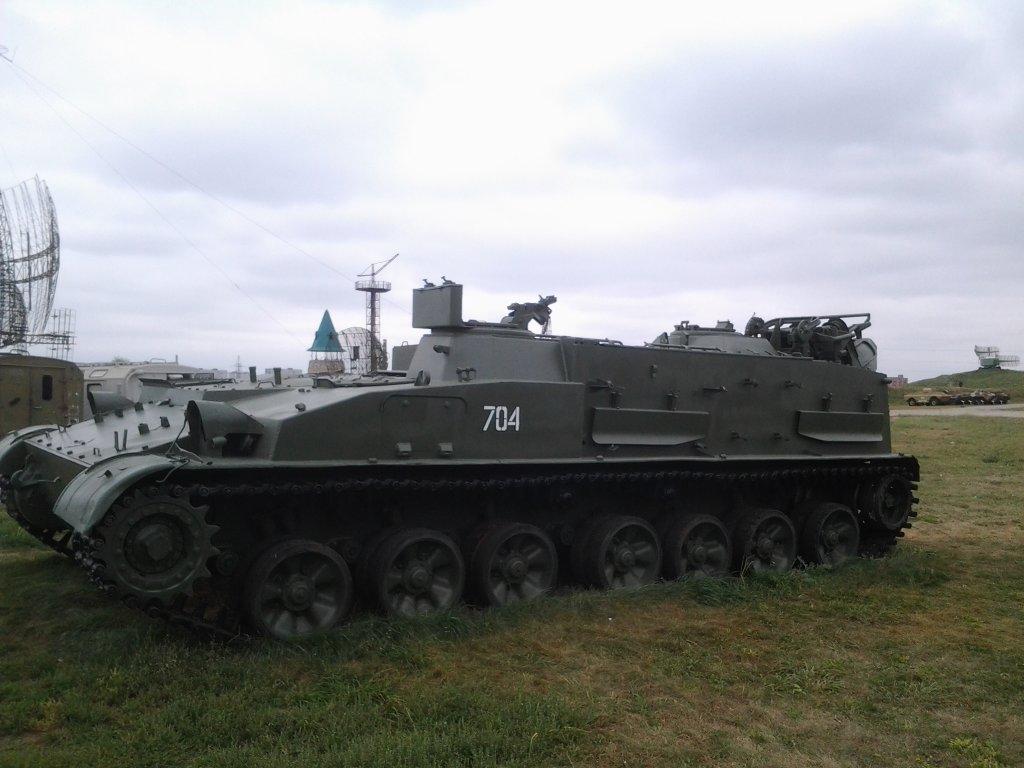 В Тольятти хотят построить партизанскую деревню