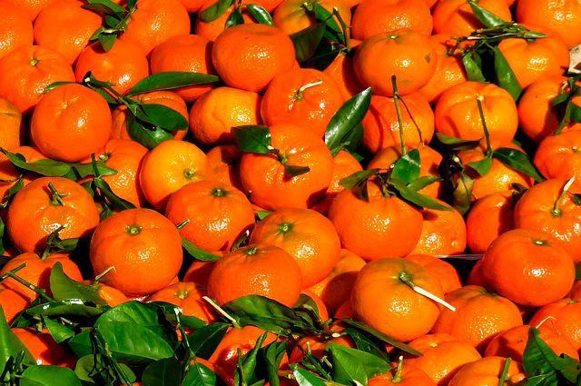 В Самарской области задержаны зараженные китайские мандарины