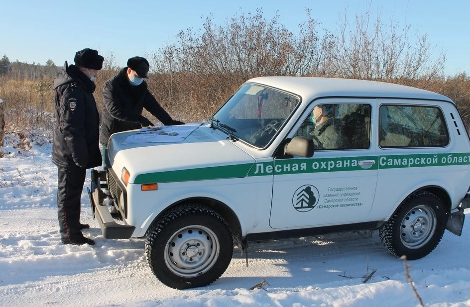 В Самарской области проводится операция «Елочка»