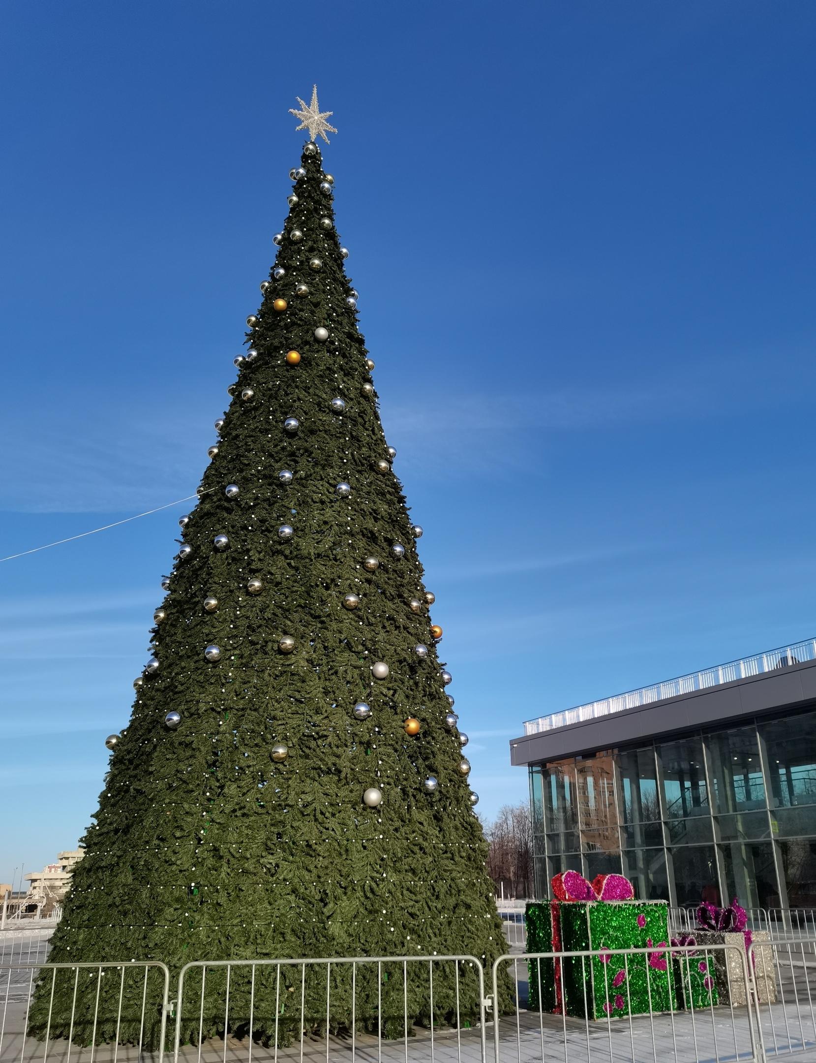 На Центральной площади Тольятти установят елку