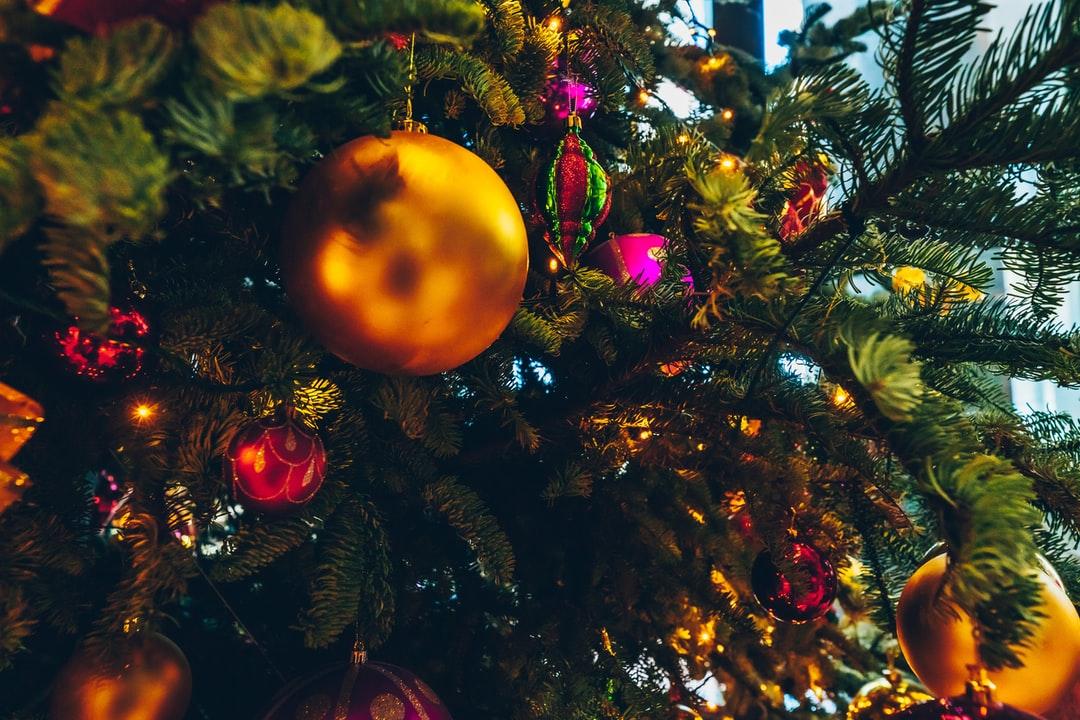 Роспотребнадзор дал советы, как безопасно встретить Новый год