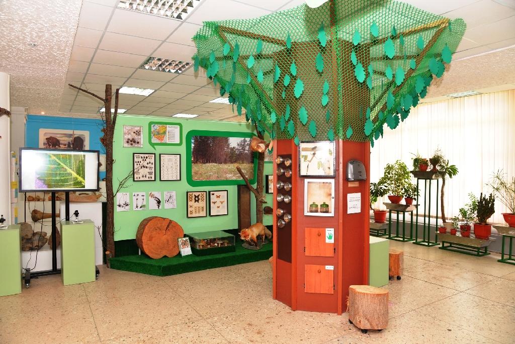 Экологическая экспозиция «Природа. Город. Человек»