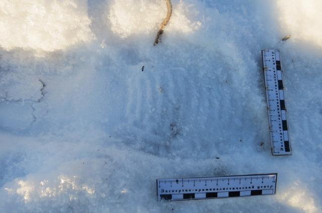 Нашли вора по следам: у жителя Самарской области украли забор