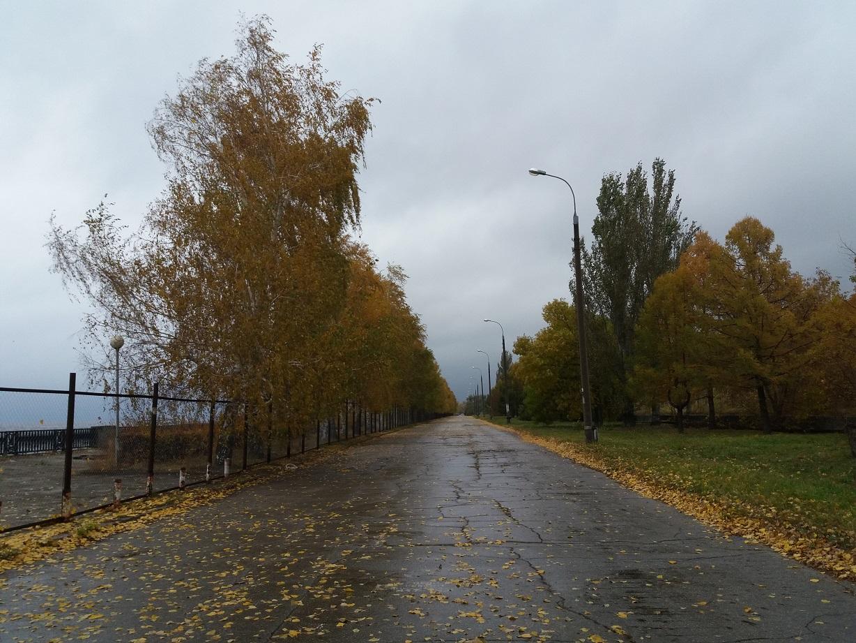 Дмитрий Азаров попросил тольяттинцев рассказать, что должно появиться на новой набережной