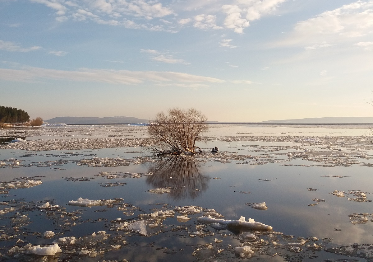 От -12 до +8: В Самарской области начнет меняться погода